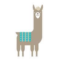 alpaca activiteiten
